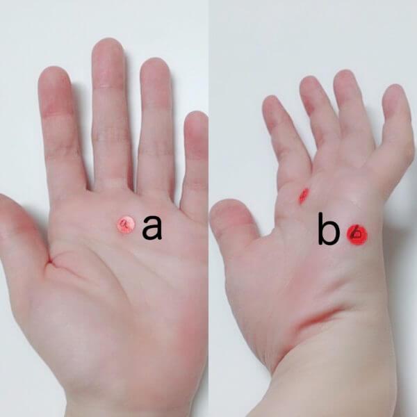 手のひらについても、2箇所を測定してみました