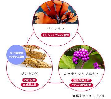 植物由来の有効成分