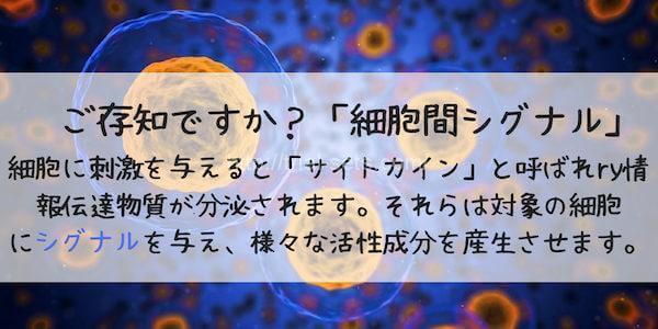 細胞間シグナル